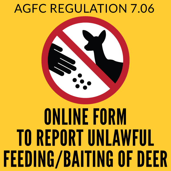 Button to Report Deer Feeding/Baiting