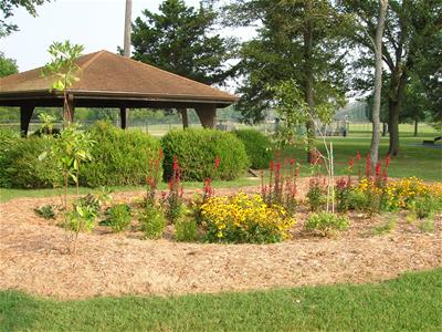 Walker Park garden with red and yellow flowers and greenery