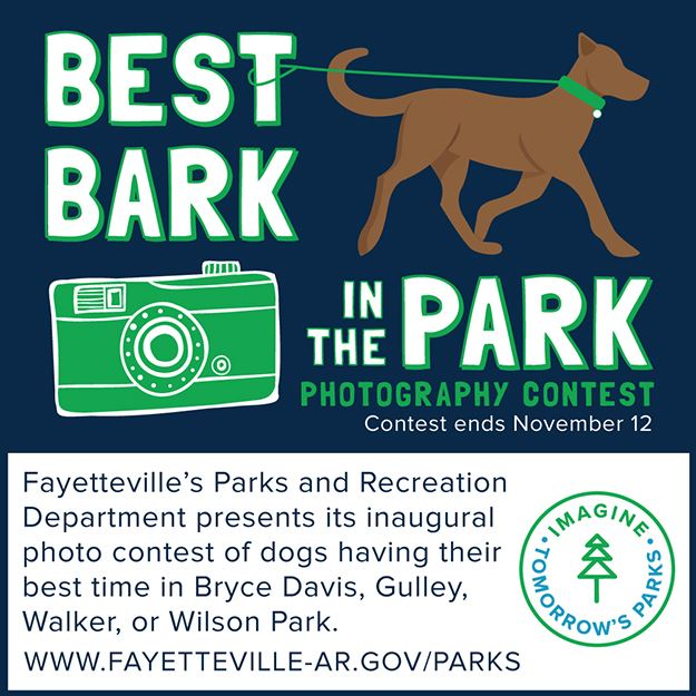 Bark in the Park Photography Contest image