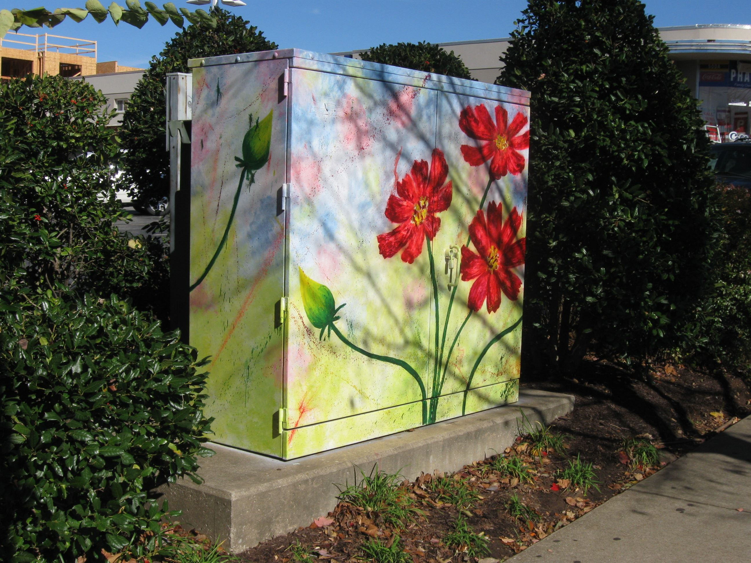 2) Dickson and Church  Power box west of Colliers Drug Store (Flowers) Heather Bennett